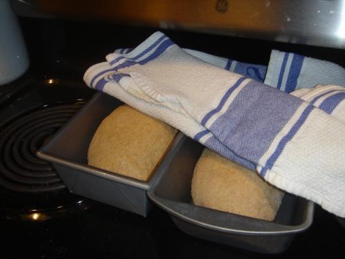 bread-again